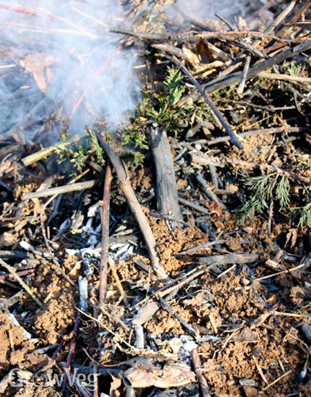 Burning woody debris to make biochar or agricultural charcoal